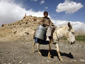 На выборах в Афганистане будут задействованы три тысячи ослов