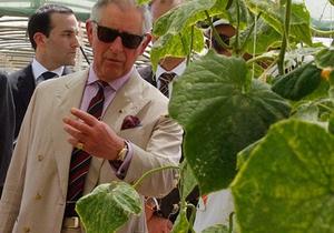 Не справился с конкуренцией. Принц Чарльз закрыл свой овощной магазин