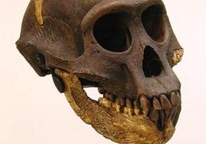 Ученые: Неандертальцы выглядели мужественнее  современных людей
