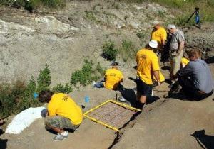 Палеонтологи нашли останки гигантской рыбы, жившей 80 млн лет назад