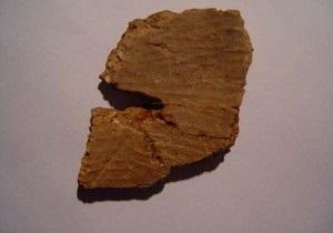 В Китае найдены фрагменты старейшего горшка в мире