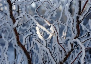 Прогноз погоды на четверг, 12 января