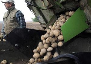 В Коростене испекли дерун из 150 кг картофеля