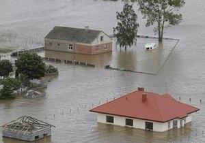Бобры стали виновниками разрушительных наводнений в Польше