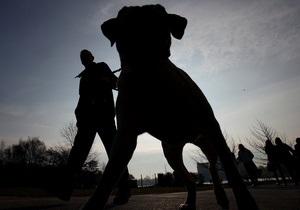 новости Киевской области - собака - В Киевской области мужчина скончался от потери крови после нападения своего ротвейлера