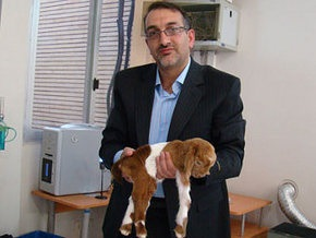 В Иране успешно клонировали козу