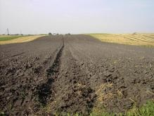 Продажа с/х земель может начаться уже в марте