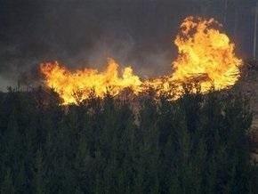 Пожары в Австралии не утихают: 173 погибших
