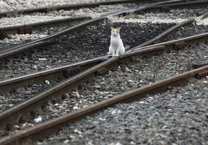 Между Киевом и Вышгородом запустили поезд