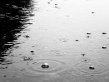 На Бразилию обрушились проливные дожди: более 200 человек остались без крова