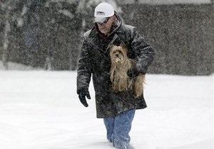 Прогноз погоды: в Украине ожидаются сильные снегопады