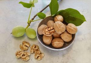 Грецкие орехи способны предотвратить диабет у женщин - исследование
