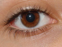 Бионические глаза способны возвращать зрение