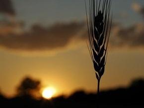 Украина экспортировала девять миллионов тонн зерна нового урожая