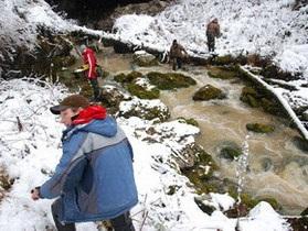 Российский охотник заявил, что спас в горах Кузбасса снежного человека