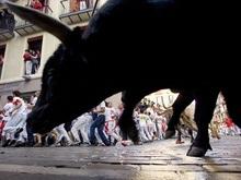 Быки ранили девятерых человек на испанском фестивале