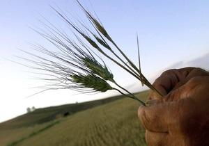 Украина собрала почти 5 млн тонн зерна