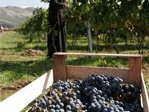 В Кабмине намерены установить минимальную цену на дешевое вино