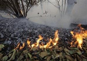 В Грузии опять пожар. Огонь тушат сотни пожарных расчетов
