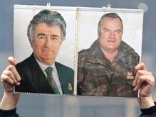 США приветствуют выдачу Караджича МТБЮ