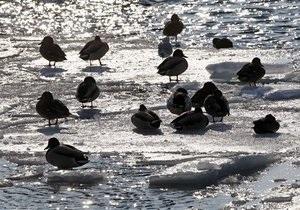Вице-премьер Вилкул - паводок - наводнение - погода в Украине - потепление - Вице-премьер Вилкул: По результатам борьбы с возможным паводком могут пройти новые увольнения