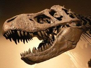 Скелет тираннозавра выставят на аукцион за 4,8 млн долл
