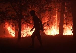 В Луганской области горит более 160 га леса: эвакуированы 285 человек