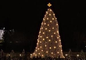 Бельгийские блогеры троллят власти из-за главной рождественской елки страны