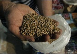 ЄС заборонив імпорт насіння з Єгипту через E.coli