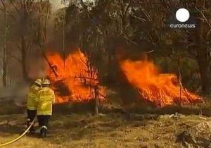 Лесные пожары в Австралии: в Новом Южном Уэльсе объявлен режим ЧП