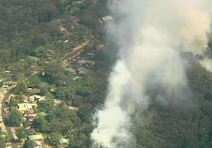 Пожары в Австралии: угроза единого огневого фронта