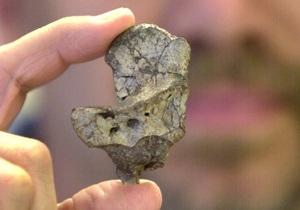 Первые сухопутные животные появились в Сибири 350 млн лет назад