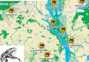 Київ - змії - гадюки - новини Києва - ЗМІ пишуть, що Київ та околиці заполонили змії