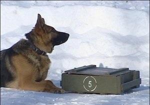 Новости России - Российских призывников в армию могут сопровождать родители и собаки