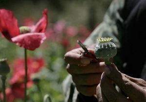 Россия, США и Афганистан совместно уничтожили 24 тонны опиатов