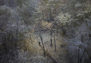 Синоптики: Послезавтра по всей территории страны ожидаются заморозки