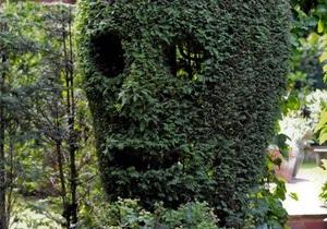 Британський невролог 20 років вистригав у дворі кущ, щоб він став схожим на череп
