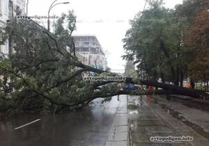 У Києві на Нижньому Валу дерево, яке впало, розчавило Lexus і повністю перекрило дорогу