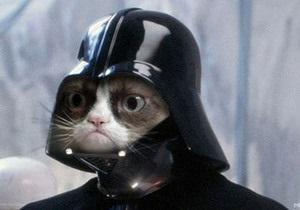 В Великобритании пройдет кинофестиваль интернет-котов - видео котов - коты -