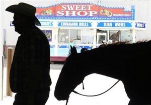 Новости США - странные новости: В США полиция задержала нетрезвого мужчину на лошади с собакой в рюкзаке