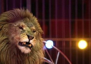 На улицах столицы Кувейта поймали льва