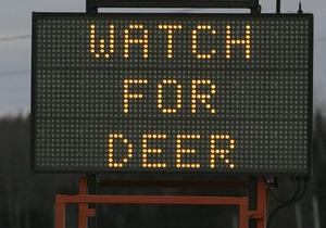 У Канаді для водіїв встановили детектор оленів