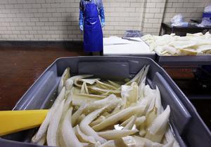 Новини Росії - риба з Норвегії - Росія знайшла  надзвичайно небезпечні  для здоров я росіян бактерії у норвезькій рибі