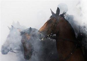 новини Львова - У Львівській області невідомий чоловік розстріляв табун коней