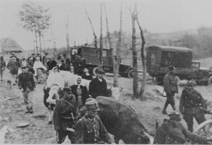Польща - геноцид - Свобода пропонує Раді визнати оперцаію Вісла геноцидом українців Польщею