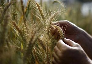 Україна - КНР - експорт зерна