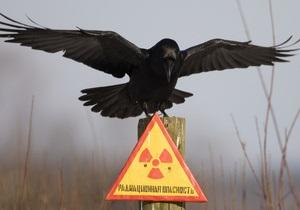 СМИ выяснили, почему вывод Чернобыльской АЭС затягивается на десятилетия - ЧАЭС - объект укрытие