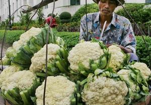 Дієтологи визначили найкорисніший овоч