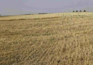 Fitch понизил рейтинги крупной украинской аграрной группы
