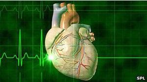 Вчені лікуватимуть серця 200 пацієнтів штучним вірусом